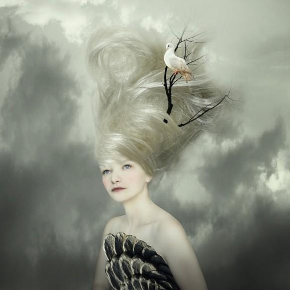 Lady Dove